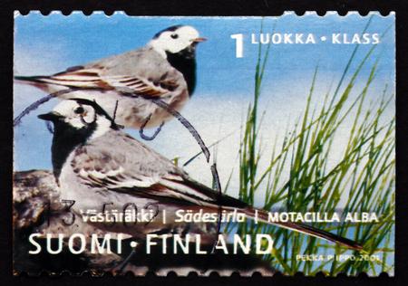 passerine: FINLANDIA - CIRCA 2001: un francobollo stampato in Finlandia mostra Ballerina bianca, Motacilla Alba, uccello passeriforme, circa 2001