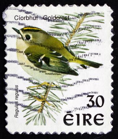 passerine: IRLANDA - CIRCA 1998: un francobollo stampato in Irlanda mostra Goldcrest, Regulus Regulus, uccello passeriforme, circa 1998