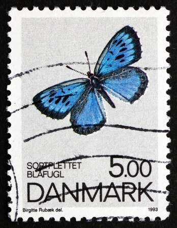 DENMARK - CIRCA 1993: a stamp printed in the Denmark shows Large Blue, Phengaris Arion, Butterfly, circa 1993
