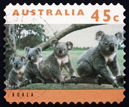 AUSTRALIA - CIRCA 1994: a stamp printed in the Australia shows Koala, Phascolarctos Cinereus, Australian Wildlife, circa 1994