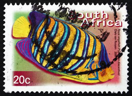 南アフリカ - 2000 年頃: 南アフリカ ショー ロイヤル エンゼルフィッシュ、Pygoplites Diacanthus、海洋の熱帯の魚、2000 年頃の印刷スタンプ 報道画像