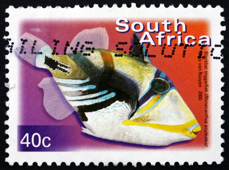 SOUTH AFRICA - CIRCA 2000: a stamp printed in South Africa shows Blackbar Triggerfish, Rhinecanthus Aculeatus, Marine Tropical Fish, circa 2000