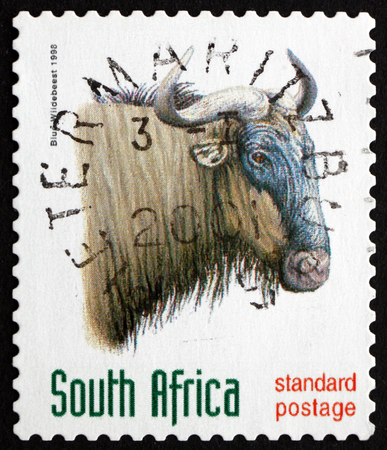 taurinus: SOUTH AFRICA - CIRCA 1998: a stamp printed in South Africa shows Blue Wildebeest, Connochaetes Taurinus, large Antelope, circa 1998