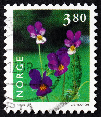 NORWAY - CIRCA 1998: a stamp printed in the Norway shows Wild Pansy, Viola Tricolor, Flowering Plant, circa 1998