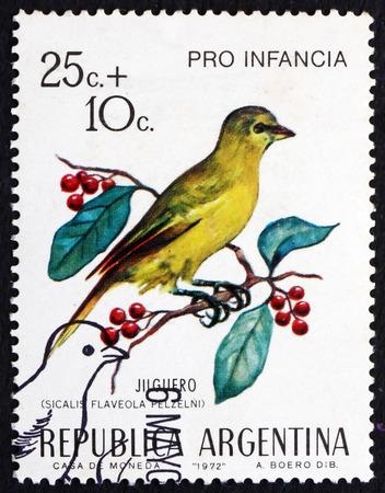 ARGENTINA - CIRCA 1972: a stamp printed in the Argentina shows Saffron Finch, Sicalis Flaveola, Bird, circa 1972