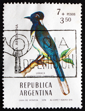 chrysops: ARGENTINA - CIRCA 1976: a stamp printed in the Argentina shows Plushcrested Jay, Cyanocorax Chrysops, Bird, circa 1976 Editorial