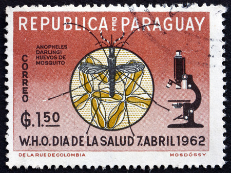 eradicate: PARAGUAY - CIRCA 1962: a stamp printed in Paraguay shows Microscope, Anopheles Mosquito and Eggs, WHO Drive to Eradicate Malaria, circa 1962