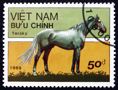 VIETNAM - CIRCA 1989: a stamp printed in Vietnam shows Tersk Horse, is a Breed of Horse Developed in the Northern Caucasus Mountains in Russia, circa 1989