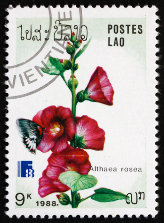 LAOS - CIRCA 1988: a stamp printed in Laos shows Hollyhock, Althaea Rosea, Ornamental Plant, circa 1988