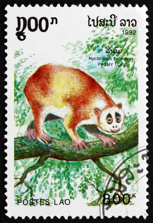 primate: LAOS - CIRCA 1992: a stamp printed in Laos shows Pygmy Loris, Nycticebus Pygmaeus, primate, circa 1992 Editorial