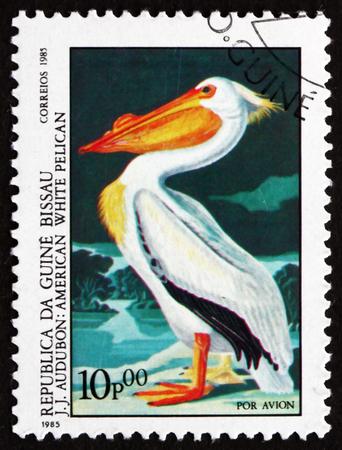 aquatic bird: GUINEA-BISSAU - CIRCA 1985: a stamp printed in the Guinea-Bissau shows American White Pelican, Pelecanus Erythrorhynchos, Aquatic Bird, circa 1985 Editorial