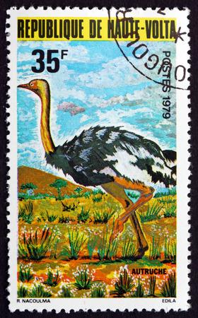 flightless bird: BURKINA FASO - CIRCA 1979: a stamp printed in Burkina Faso shows Ostrich, Struthio Camelus, Flightless Bird, circa 1979