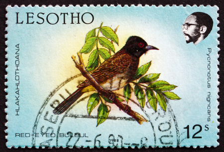 LESOTHO - CIRCA 1988: a stamp printed in the Lesotho shows African Red-eyed Bulbul, Pycnonotus Nigricans, Bird, circa 1988