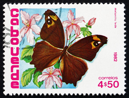 cape verde: CAPE VERDE - CIRCA 1982: a stamp printed in the Cape Verde shows Common Evening Brown, Melanitis Leda, Butterfly, circa 1982