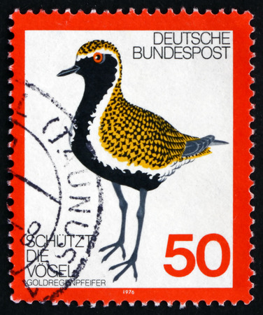 GERMANY - CIRCA 1976: a stamp printed in the Germany shows Golden Plover, Pluvialis Apricaria, Bird, circa 1976 Editorial