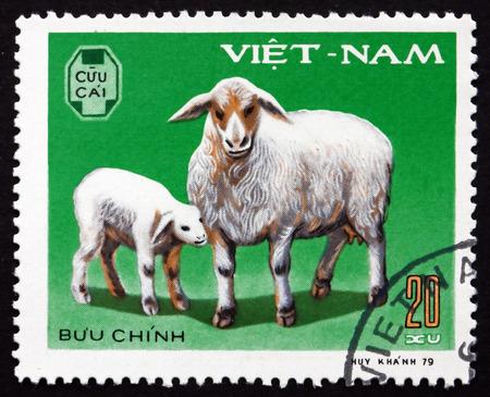 domestic animal: VIETNAM - CIRCA 1979: a stamp printed in Vietnam shows Ewe, Lamb, Domestic Animal, circa 1979