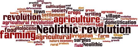 tillage: Neolitico nuvola concetto di parola rivoluzione. Illustrazione vettoriale Vettoriali