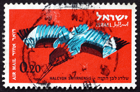 bird of israel: ISRAEL - CIRCA 1963: a stamp printed in the Israel shows White-breasted Kingfisher, Halcyon Smyrnensis, Tree Kingfisher, Bird, circa 1963