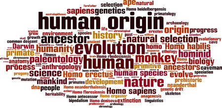 homo erectus: Human origin word cloud concept. Vector illustration