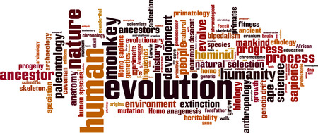 evolve: Evolution word cloud concept. Vector illustration Illustration