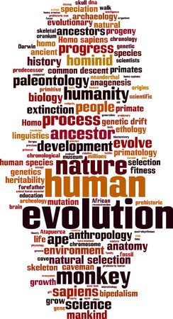 evolutionary: Evolution word cloud concept. Vector illustration Illustration