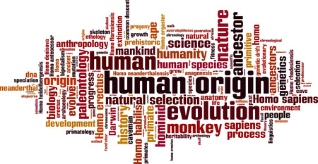 habilis: Human origin word cloud concept. Vector illustration