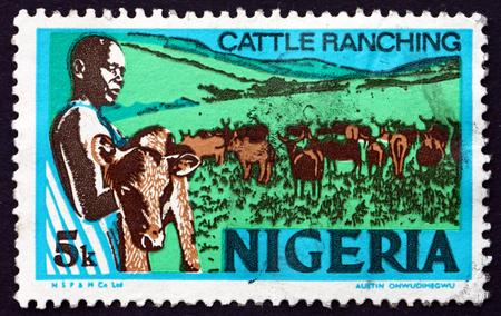 ranching: NIGERIA - alrededor de 1974: un sello impreso en Nigeria muestra Ganader�a, alrededor de 1974