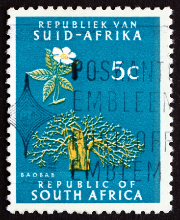 adansonia: SOUTH AFRICA - CIRCA 1961: a stamp printed in South Africa shows Baobab tree, circa 1961 Editorial