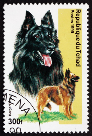 herding dog: CHAD - CIRCA 1971: a stamp printed in Chad shows Belgian Shepherd, Berger Belge, is Bred of Herding Dog, circa 1971 Editorial