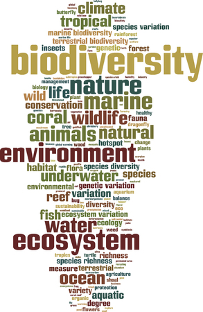 biodiversity: Biodiversity word cloud concept. Vector illustration