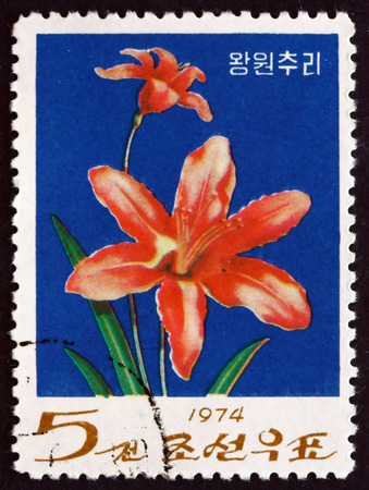 day flowering: NORTH KOREA - CIRCA 1974: a stamp printed in North Korea shows Day Lily, Flowering Plant, circa 1974 Editorial
