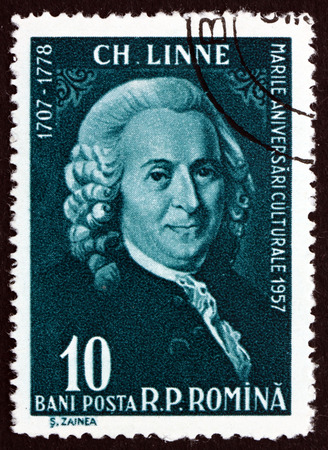 botanist: ROMANIA - CIRCA 1958: a stamp printed in the Romania shows Carl von Linne, Carl Linnaeus, Swedish Botanist, Physician, Zoologist, circa 1958