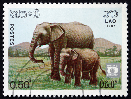 indian postal stamp: LAOS - CIRCA 1985: a stamp printed in Laos shows Indian Elephant, Adult and Calf, circa 1985