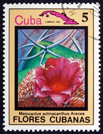 the turks: CUBA - CIRCA 1983: a stamp printed in the Cuba shows Dwarf Turks-cap Cactus, Melocactus Actinacanthus, suculent, circa 1983