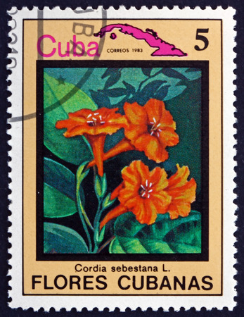 flowering plant: CUBA - CIRCA 1983: a stamp printed in the Cuba shows Geiger Tree, Cordia Sebestena, Flowering Plant, circa 1983 Editoriali