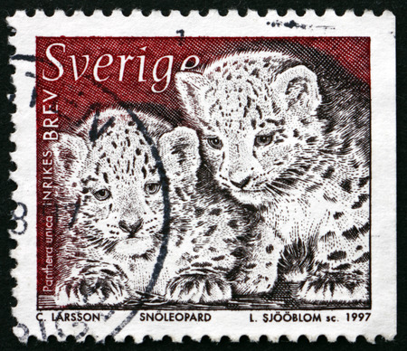 snow leopard: SWEDEN - CIRCA 1997: a stamp printed in the Sweden shows Snow Leopard, Panthera Uncia, Wild Animal, circa 1997 Editorial
