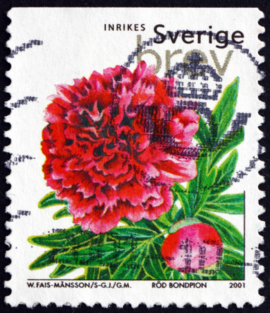 chinese postage stamp: SWEDEN - CIRCA 2001: a stamp printed in the Sweden shows Chinese Peony Mons Jules Elie, Paeonia, Flowering Plant, circa 2001 Editorial