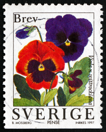 flowering plant: SWEDEN - CIRCA 1997: a stamp printed in the Sweden shows Garden Pansy, Viola x Wittrockiana, Flowering Plant, circa 1997