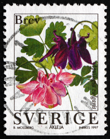 flowering plant: SWEDEN - CIRCA 1997: a stamp printed in the Sweden shows European Columbine, Aquilegia Vulgaris, Flowering Plant, circa 1997