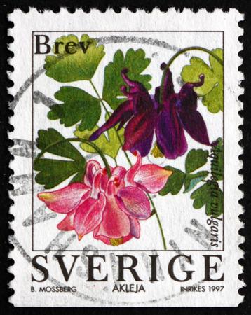 flowering plant: SWEDEN - CIRCA 1997: a stamp printed in the Sweden shows European Columbine, Aquilegia Vulgaris, Flowering Plant, circa 1997