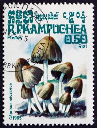 kampuchea: CAMBODIA - CIRCA 1985: a stamp printed in Cambodia shows Mica Cap, Coprinus Micaceus, Mushroom, circa 1985
