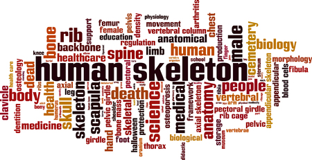 axial: Human skeleton word cloud concept. Vector illustration