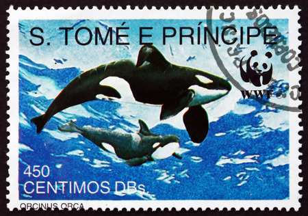 tome: SAO TOME AND PRINIPE - CIRCA 1992: a stamp printed in Sao Tome and Principe shows Killer Whale, Orcinus Orca, is Toothed Whale, circa 1992 Editorial