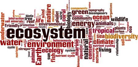 ecosistema: la palabra de los Ecosistemas del concepto de la nube. ilustración Vectores