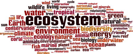 ecosystem: Ecosystem word cloud concept. illustration Illustration