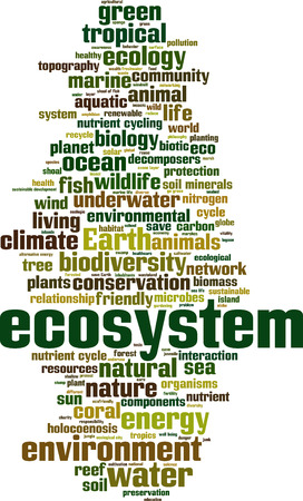 ecosystem: Ecosystem word cloud concept. Vector illustration