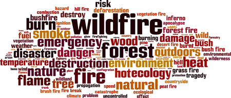 Wildfire word cloud concept. Vector illustration