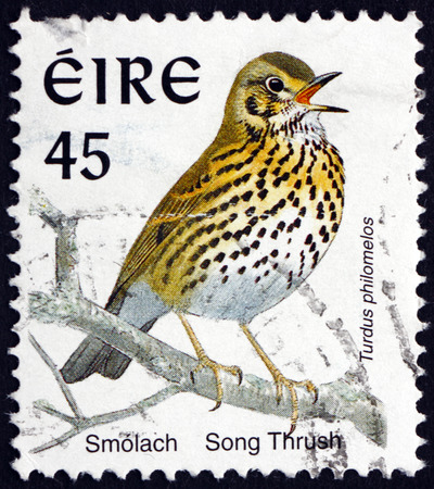 song bird: IRELAND - CIRCA 1998: a stamp printed in Ireland shows Song Thrush, Turdus Philomelos, Bird, circa 1998