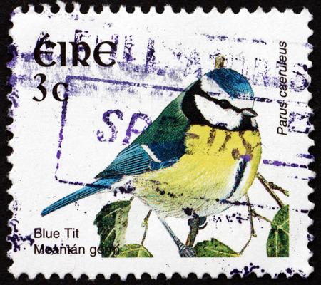 passerine: IRELAND - CIRCA 2002: a stamp printed in Ireland shows Blue Tit, Cyanistes Caeruleus, is a small Passerine Bird, circa 2002