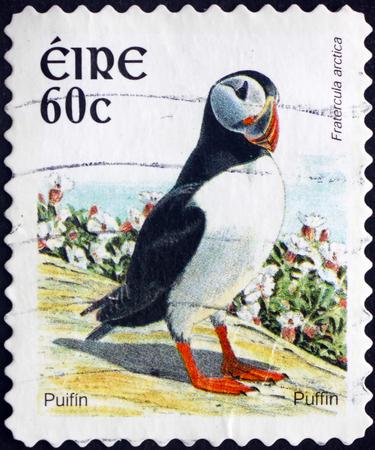 seabird: IRELAND - CIRCA 2004: a stamp printed in Ireland shows Puffin, Fratercula Arctica, Seabird, circa 2004 Editorial